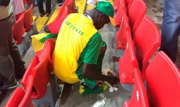 Aficionados de Senegal limpian su grada tras ganar a Polonia