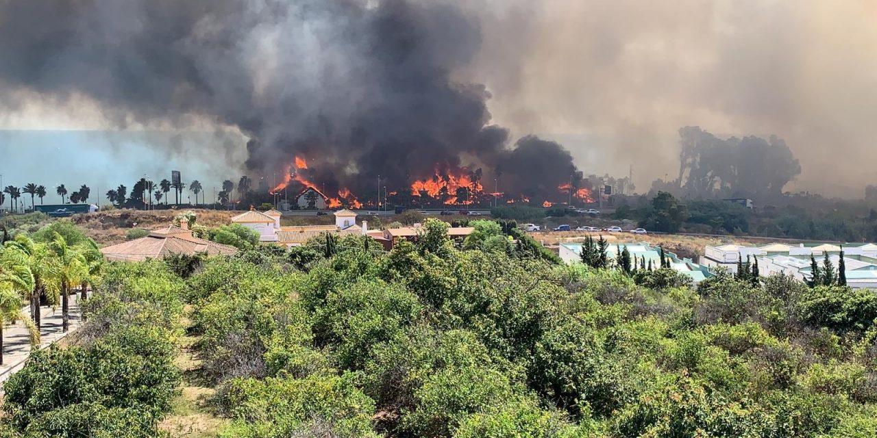 Vídeos del incendio en Estepona | Laguna beach arde